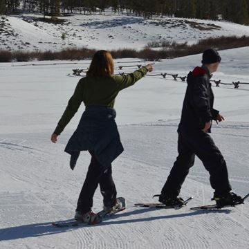 Picture of Alpine Family Snowshoe - Full Day